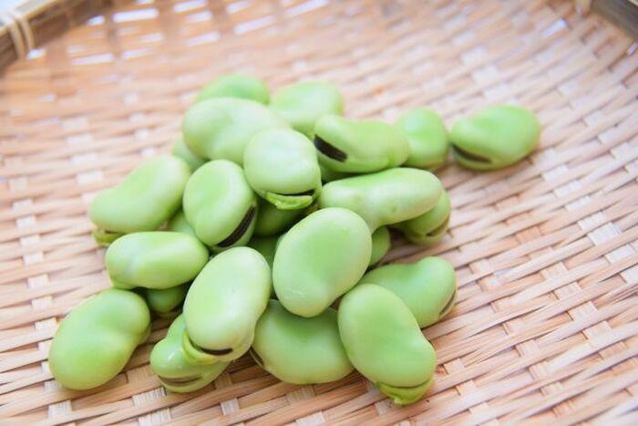 栄養豊富なそら豆