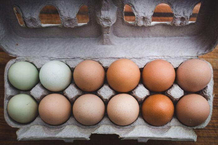 たくさんの生卵