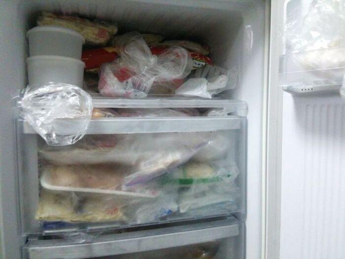 冷凍保存されたもやし