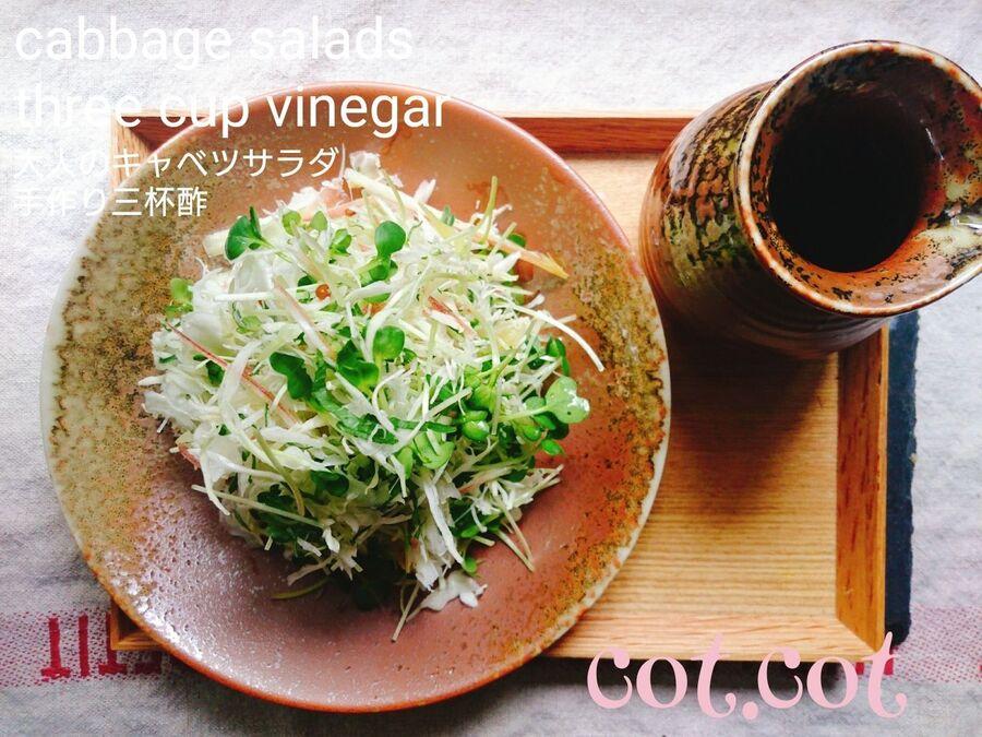 サラダ キャベツ キャベツのシンプルサラダ(副菜) レシピ・作り方