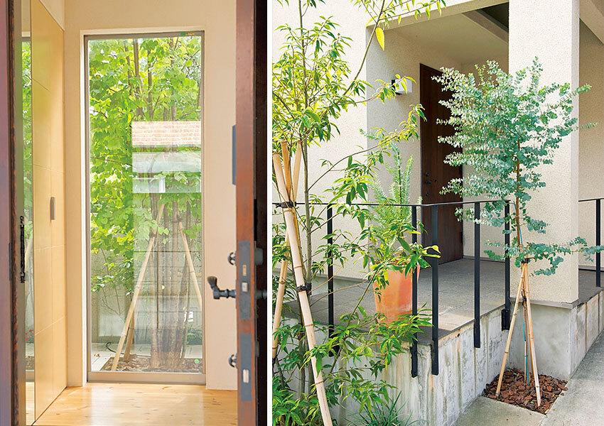 出入りするたびに季節の折々の姿を楽しめる緑がいっぱいの玄関